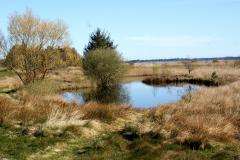Dam-nær-Kristians-Havn